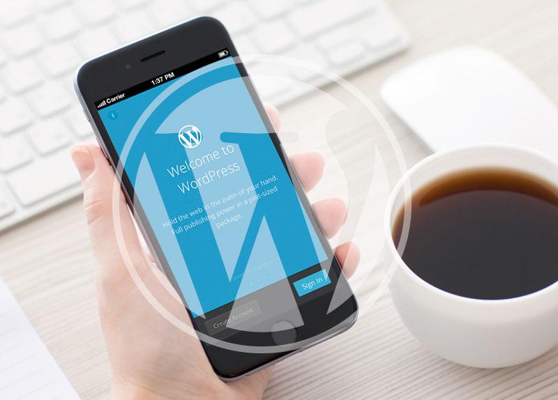 Diseño & desarrollo Web WordPress en Valencia