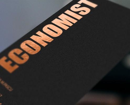 Diseño de logotipo creativo para Economista